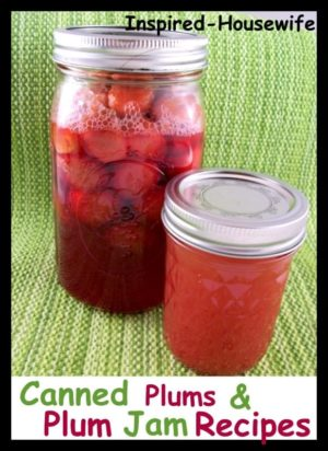 Inspired-Housewife: Low Sugar Plum Jam and Canned Plums Recipes